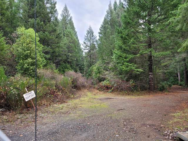 0 Stage Stop Drive, Cave Junction, OR 97523 (MLS #220113697) :: The Bifano Home Team