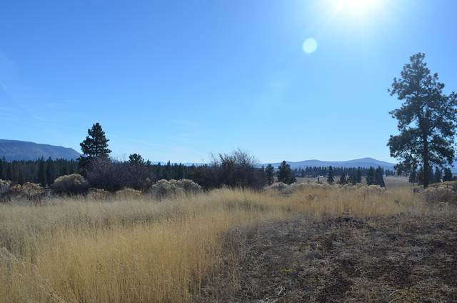 7900TL Amberwood Court, Chiloquin, OR 97624 (MLS #220113896) :: Fred Real Estate Group of Central Oregon