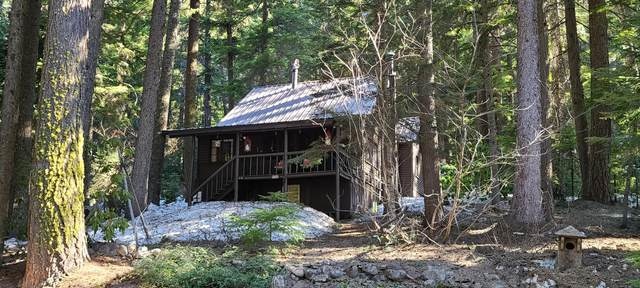 22633 Hwy 58, Crescent Lake, OR 97733 (MLS #220119406) :: Stellar Realty Northwest