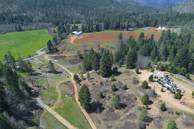 Address Not Published, Selma, OR 97538 (MLS #220122919) :: Bend Homes Now