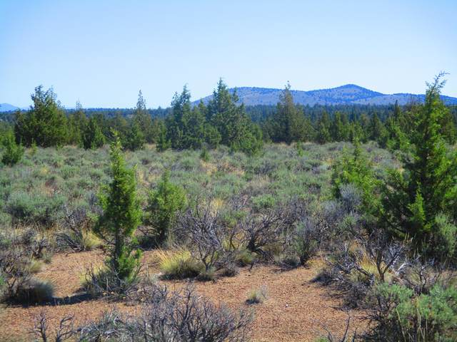 TL100 SE Cascade Way, Prineville, OR 97754 (MLS #220123305) :: Bend Homes Now