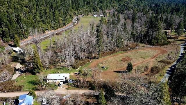 130 Bloom Road, Wolf Creek, OR 97497 (MLS #220123896) :: Vianet Realty