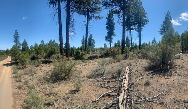 Ruffled Grouse Lane, Sprague River, OR 97639 (MLS #220125468) :: The Riley Group