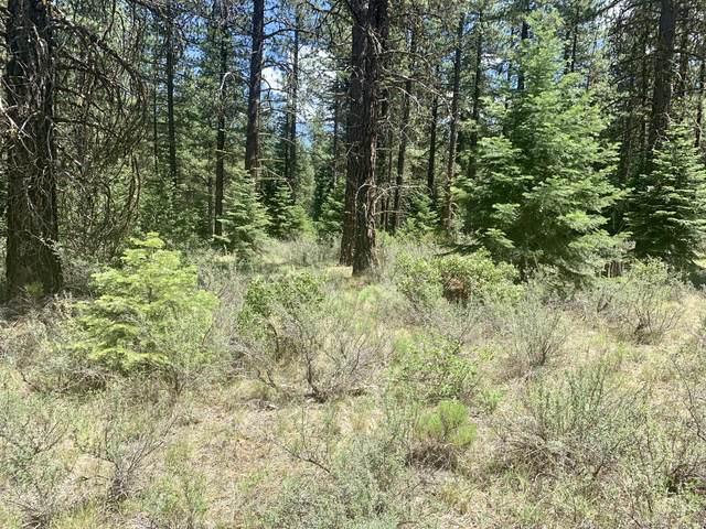 0 Varney Creek Road, Klamath Falls, OR 97601 (MLS #220125815) :: Coldwell Banker Bain
