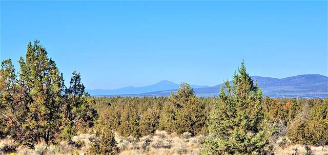 11756 SE Go Around Court, Prineville, OR 97754 (MLS #220127247) :: The Riley Group