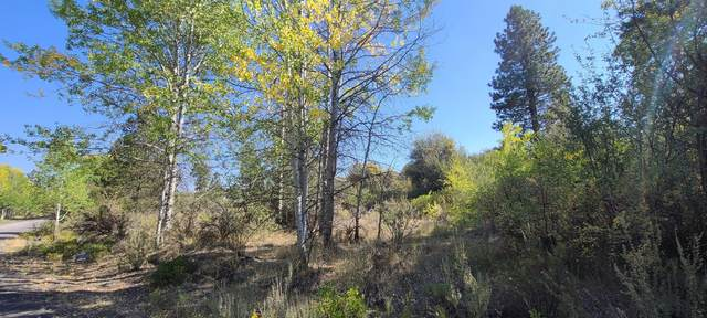 Lot 6 Forest View Dr., Chiloquin, OR 97624 (MLS #220129355) :: Oregon Farm & Home Brokers