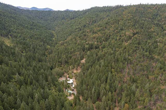 1450 Round Prairie Road, Wilderville, OR 97543 (MLS #220130086) :: FORD REAL ESTATE
