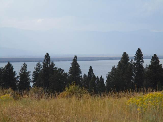 Pleasant View Road, Chiloquin, OR 97624 (MLS #220131426) :: Team Birtola | High Desert Realty