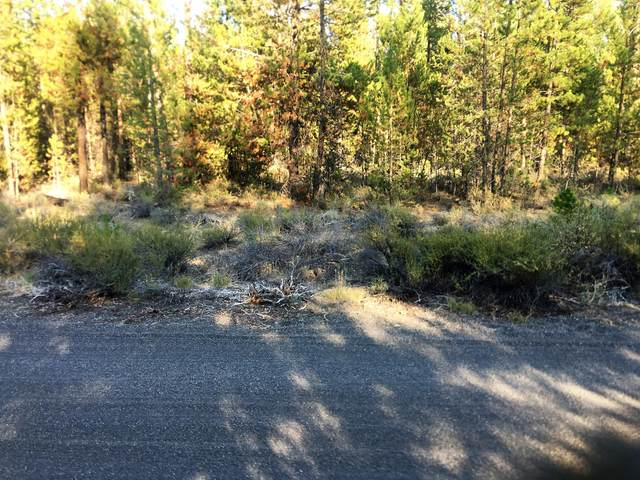 53620 Woodchuck Drive, La Pine, OR 97739 (MLS #220131860) :: Vianet Realty