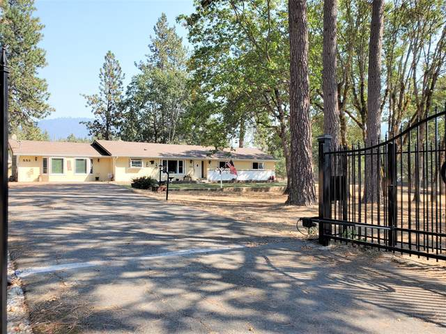 553 Soldier Creek Road, Grants Pass, OR 97526 (MLS #220132134) :: The Bifano Home Team