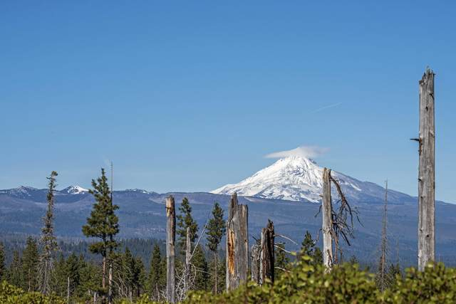 70400 Mcallister Road, Sisters, OR 97759 (MLS #220133206) :: The Ladd Group