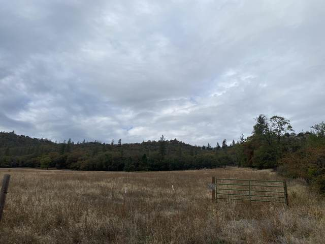 3410 W Griffin Creek Road, Medford, OR 97501 (MLS #220133426) :: FORD REAL ESTATE