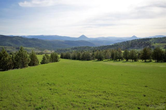 0 Hwy 26 Tl1602, Mitchell, OR 97750 (MLS #201903445) :: The Ladd Group