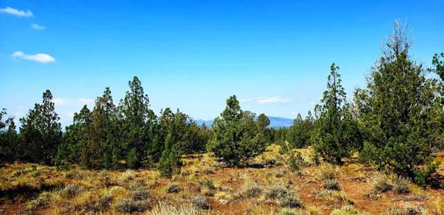 15251 SE Yakima Road, Prineville, OR 97754 (MLS #201908769) :: Team Birtola | High Desert Realty