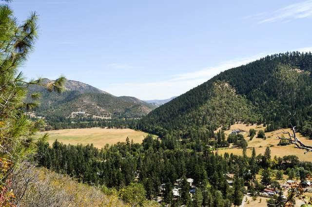550 Thompson Creek Road, Applegate, OR 97530 (MLS #220106971) :: The Payson Group