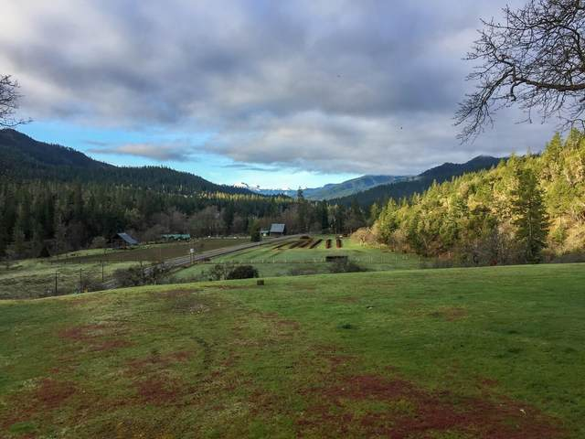 6500 Upper Applegate Road, Jacksonville, OR 97530 (MLS #220108786) :: The Payson Group