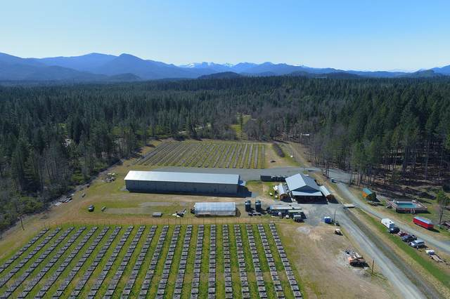 Address Not Published, Cave Junction, OR 97523 (MLS #220118878) :: Chris Scott, Central Oregon Valley Brokers
