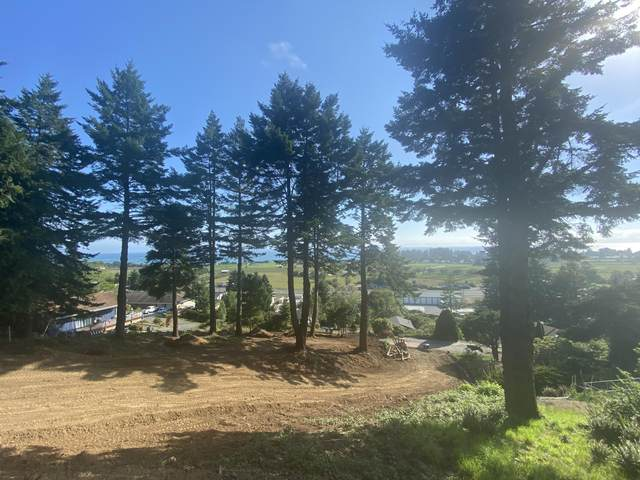 0 Pelican Bay Drive, Brookings, OR 97415 (MLS #220121082) :: Bend Relo at Fred Real Estate Group