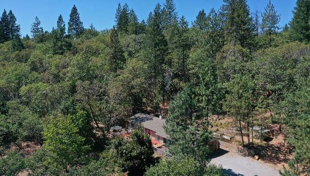 848 Oxyoke Road, Grants Pass, OR 97526 (MLS #220128891) :: FORD REAL ESTATE