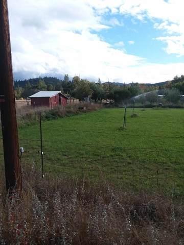 911 Deer Creek Road, Selma, OR 97538 (MLS #220131093) :: The Riley Group