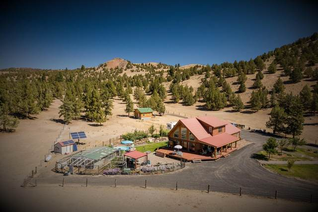 19215 SE Paulina Highway, Post, OR 97752 (MLS #220131353) :: Fred Real Estate Group of Central Oregon
