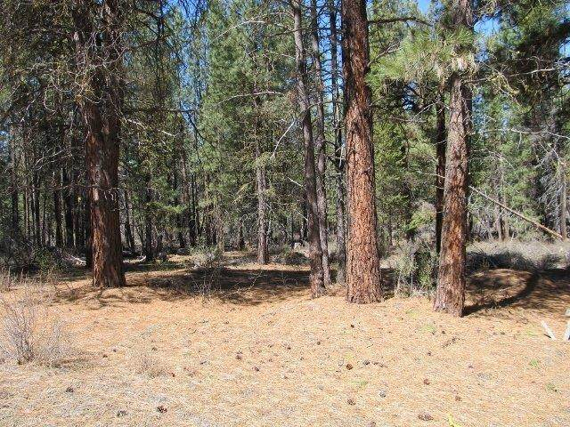 0 Corbell Drive, Chiloquin, OR 97624 (MLS #103002853) :: Team Birtola | High Desert Realty