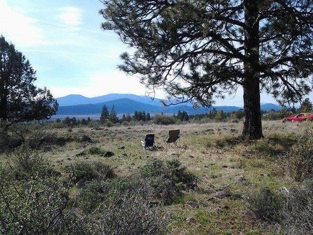 6384 Rustler Peak Way - Photo 1