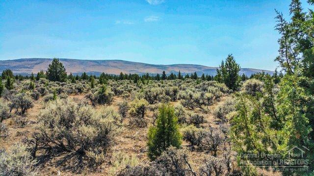 1110 SW Palm Lane, Prineville, OR 97754 (MLS #201508368) :: Birtola Garmyn High Desert Realty
