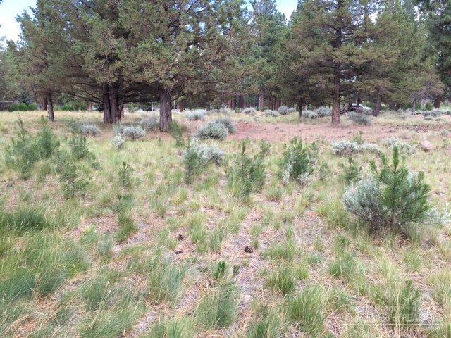 17074 Lady Caroline Drive, Sisters, OR 97759 (MLS #201605858) :: Birtola Garmyn High Desert Realty