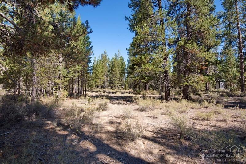53434 Holiday Drive, La Pine, OR 97739 (MLS #201608867) :: Birtola Garmyn High Desert Realty