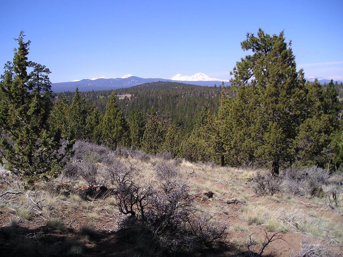 1660 NW Wild Rye Circle, Bend, OR 97703 (MLS #201609236) :: Birtola Garmyn High Desert Realty