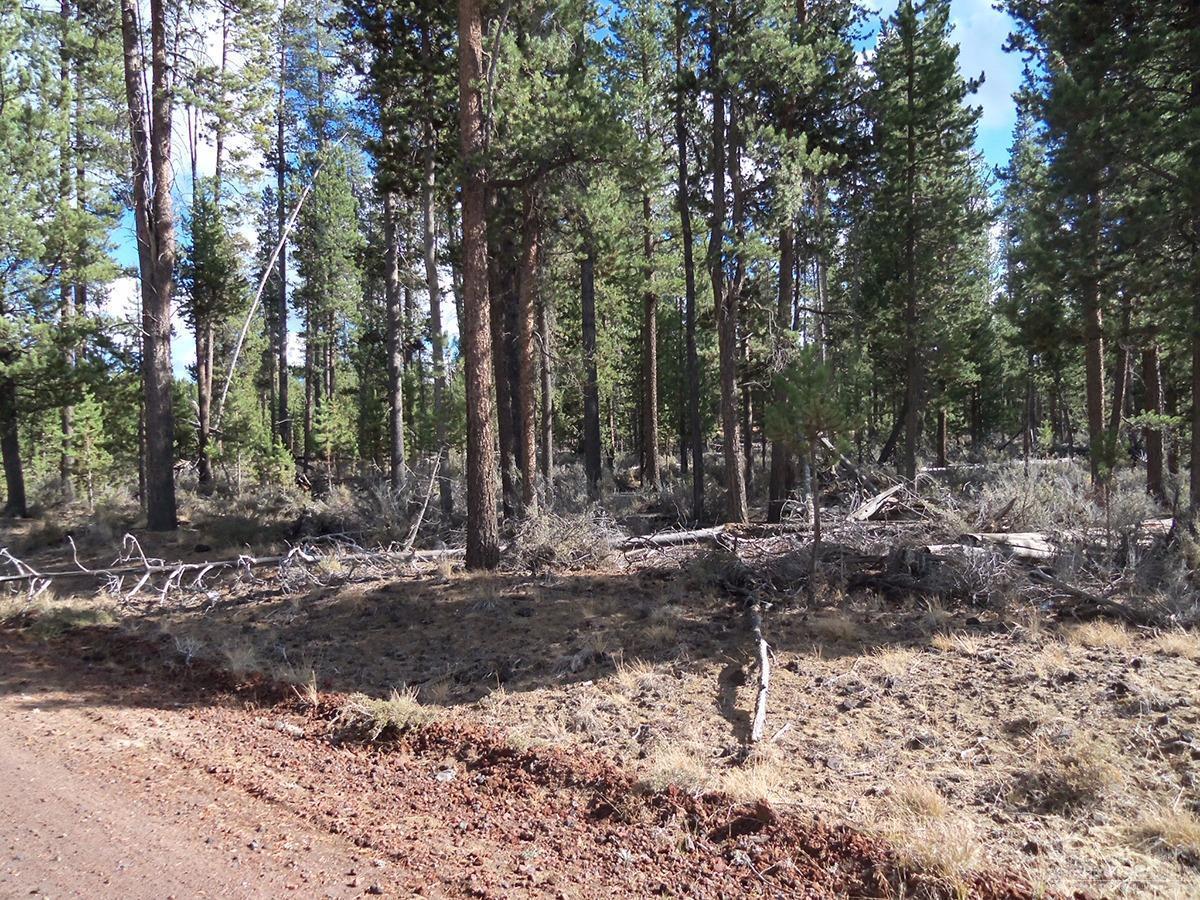 5900 Larchwood Drive Lot, La Pine, OR 97739 (MLS #201609934) :: Birtola Garmyn High Desert Realty