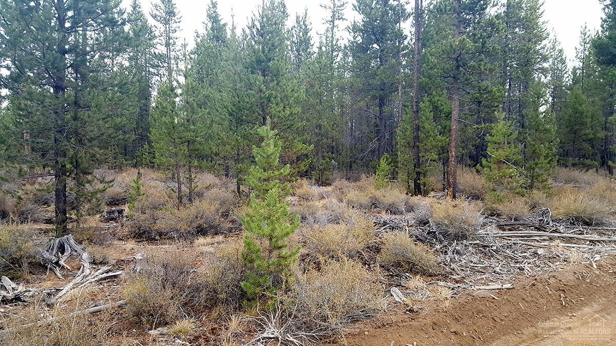1800 Section 36, La Pine, OR 97739 (MLS #201610148) :: Birtola Garmyn High Desert Realty