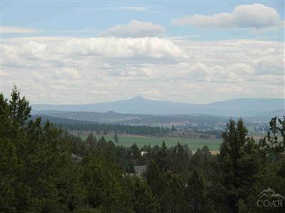 11516 Nye, Prineville, OR 97754 (MLS #201611578) :: Birtola Garmyn High Desert Realty