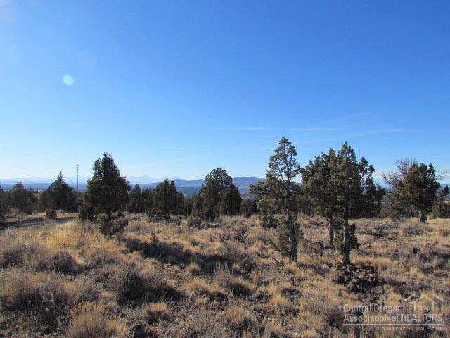 6698 SE Weatherby Loop, Prineville, OR 97754 (MLS #201703236) :: Birtola Garmyn High Desert Realty