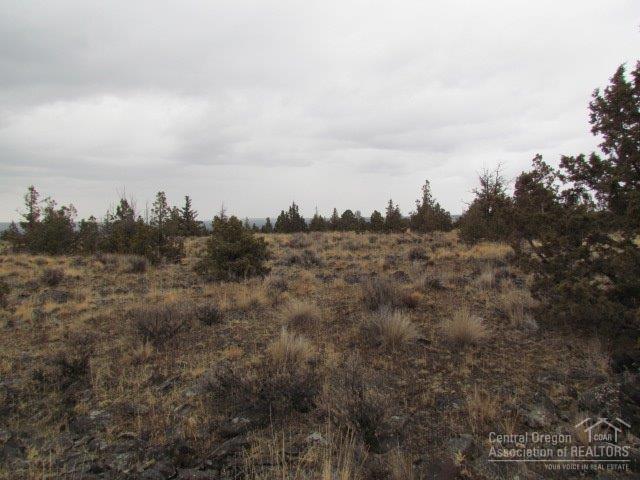 15800 SE Winchester Loop, Prineville, OR 97754 (MLS #201703239) :: Birtola Garmyn High Desert Realty