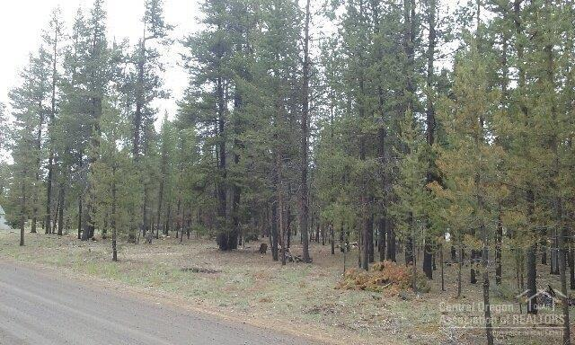 0 Park Drive, La Pine, OR 97739 (MLS #201704873) :: The Ladd Group