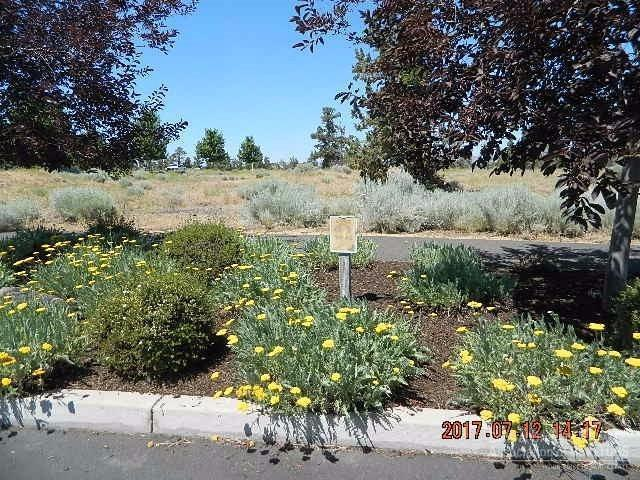 565 SW Tamarack Court, Redmond, OR 97756 (MLS #201706779) :: Pam Mayo-Phillips & Brook Havens with Cascade Sotheby's International Realty