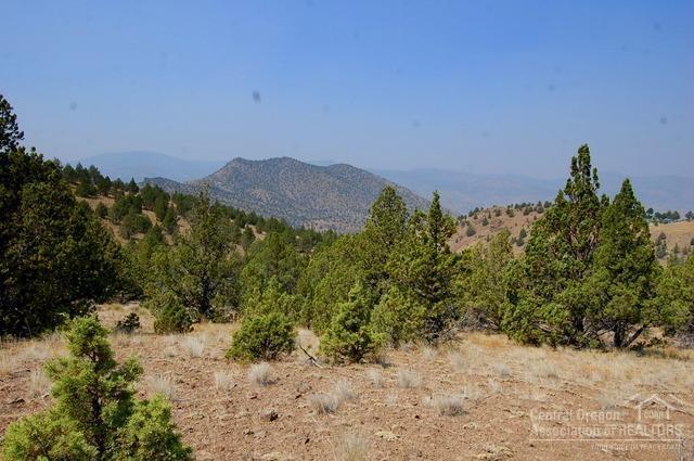 0 Cougar Mountain Road Tl3700, Mitchell, OR 97750 (MLS #201707788) :: Birtola Garmyn High Desert Realty