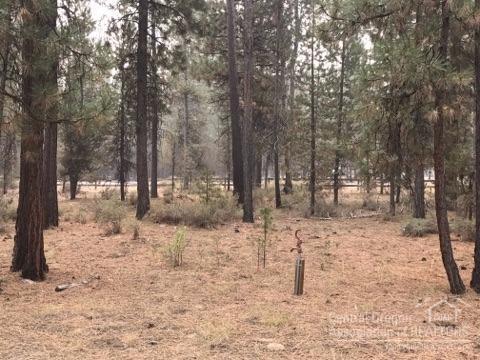 15764 Shellie, La Pine, OR 97739 (MLS #201709009) :: Birtola Garmyn High Desert Realty