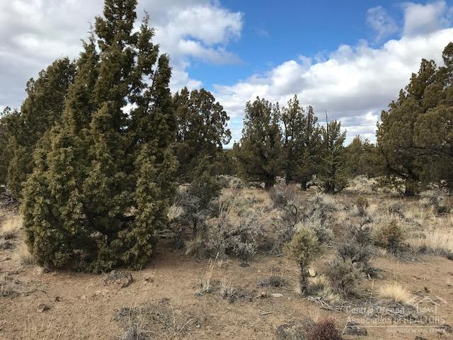 0 SE Modoc Road Tl3100, Prineville, OR 97754 (MLS #201802119) :: The Ladd Group
