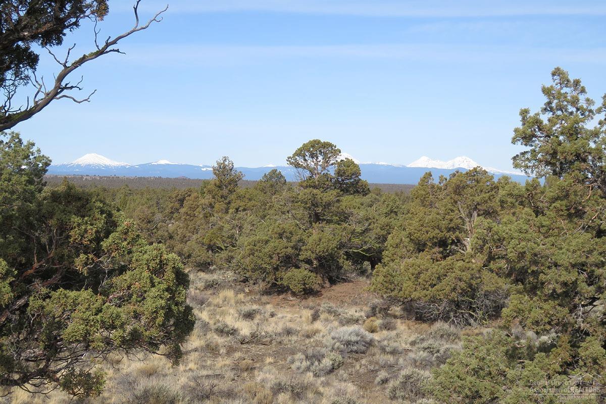 25150-100 Horse Ridge Frontage - Photo 1