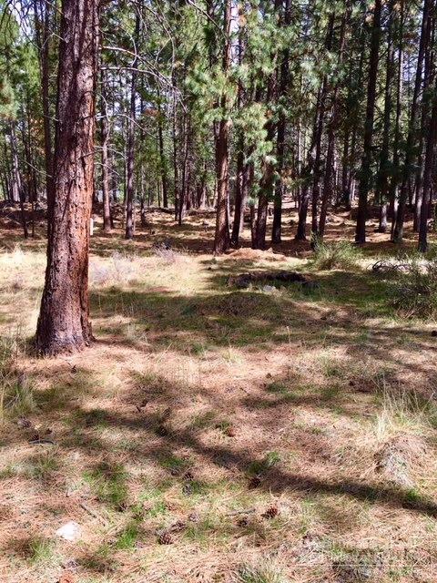 60134 Turquoise Road, Bend, OR 97702 (MLS #201803274) :: Windermere Central Oregon Real Estate