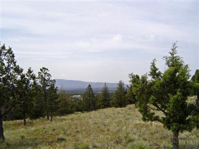 15560 SE Winchester Loop, Prineville, OR 97754 (MLS #201804088) :: Pam Mayo-Phillips & Brook Havens with Cascade Sotheby's International Realty