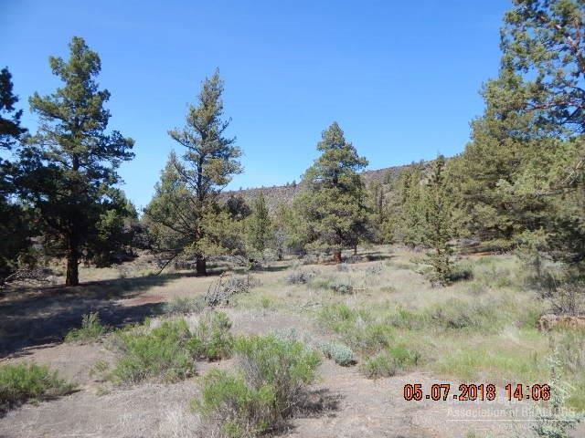 0 Steelhead Falls Road 2-Lot, Crooked River, OR 97760 (MLS #201804514) :: Premiere Property Group, LLC