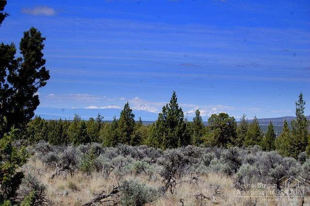 0 Millican Road Tl2700, Prineville, OR 97754 (MLS #201804942) :: Fred Real Estate Group of Central Oregon