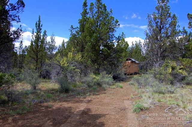 0 SE Wolf Road Tl3600, Prineville, OR 97754 (MLS #201805010) :: Team Birtola | High Desert Realty
