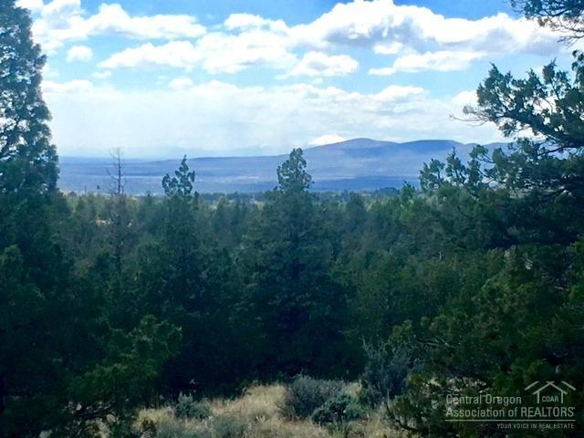 0 SE Odessa Road Tl1000, Prineville, OR 97754 (MLS #201805337) :: Windermere Central Oregon Real Estate