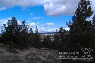 15301 SE Winchester Way, Prineville, OR 97754 (MLS #201805859) :: Pam Mayo-Phillips & Brook Havens with Cascade Sotheby's International Realty