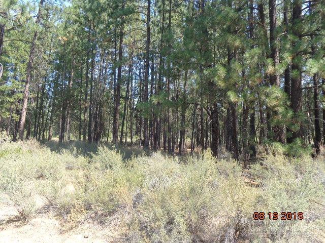59676 Cheyenne Road, Bend, OR 97702 (MLS #201808522) :: Team Birtola | High Desert Realty